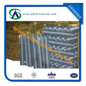 Stainless Steel Wire Mesh (factory) pictures & photos