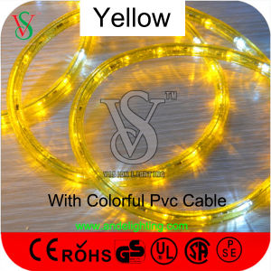 Ce, RoHS, IP54 colorful LED Rope Light for Outdoor Decoration pictures & photos