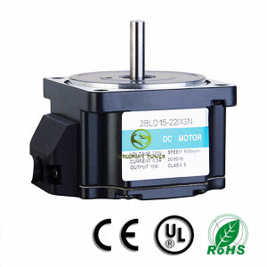 15W~500W Wide Used DC Brushless Motor with Controller pictures & photos