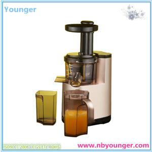 Slow Auger Juicer pictures & photos