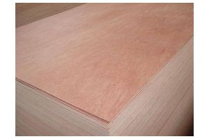 Plywood with Bintangor Face Veneer and Poplar Core pictures & photos