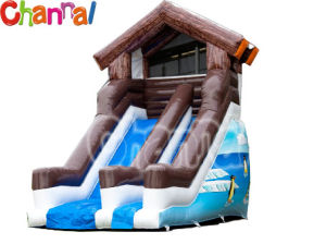 Winter Theme Inflatable Slide/Kids Inflatable Slide Bb028 pictures & photos