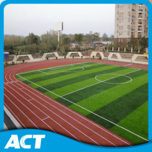 Artificial Turf Grass High Quality Two Color Monofil Football Soccer Artificial Grass (Y50) pictures & photos