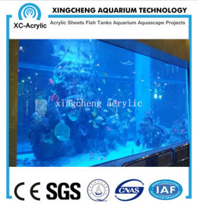 Cell Cast Acrylic Sheet of Public Aquarium Tank pictures & photos