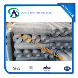 Electro Galvanized Square Wire Mesh Closed Edge pictures & photos