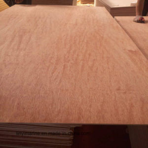 12mm Bintangor Face Plywood WBP/Mr Glue pictures & photos
