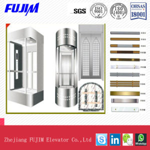 1000kg Capacity Observation Elevator with ISO pictures & photos