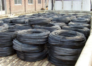 Steel Wire / Black Annealed Wire pictures & photos