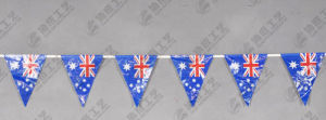 Triangle Bunting Flags pictures & photos