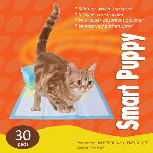 Outdoor Indoor Dog Potty Toilet Training Pet Pads (6060-1) pictures & photos