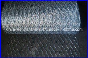 Chicken Coop/Galvanized Hexagonal Wire Netting pictures & photos