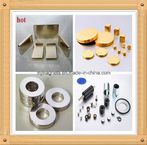 Rare Earth Super Strong Permanent Magnet of Chinese Supplier