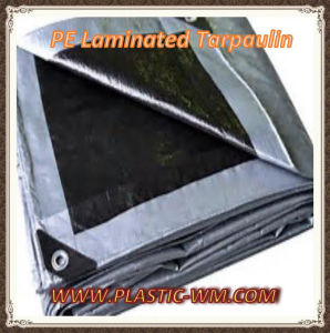 PE Laminated Tarpaulin, Fence Tarpaulin pictures & photos