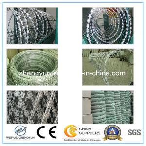 Steel Concertina Razor Barbed Wire pictures & photos
