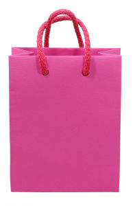 Red Garment Paper Gift Bags From China Packaging Manufacturer (FLP-8953) pictures & photos