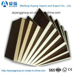 Film Faced Plywood with Brown Black Film pictures & photos