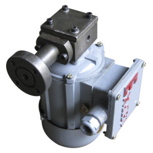 Zcb-2.5 Hydraulic Gear Oil Pump and Motor pictures & photos