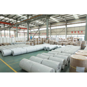 Vulcanized Fiber Paper (roll) pictures & photos