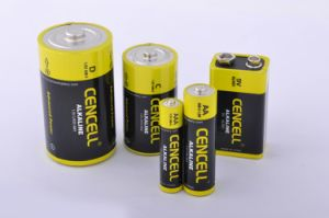Smoke Alarm Alkaline Battery 9V/6lr61 pictures & photos