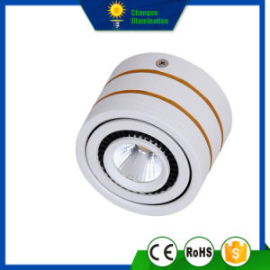 3W Surface COB LED Ceiling Down Light pictures & photos