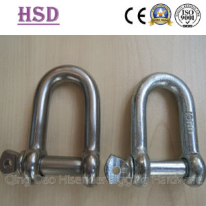Shackle, D Type, Ss316 and Galvanized Type, European D Type, JIS D Type, Rigging Hardware, Marine Hardware pictures & photos