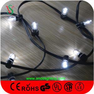 12V LED String Light Chrsitmas Light Decoration pictures & photos