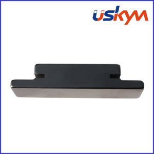 China Customer Shape NdFeB Magnets (S-002) pictures & photos