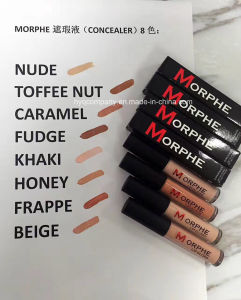 Morphe Makeup Highlighter Concealer Lip Gloss Concealer 12 Colors pictures & photos