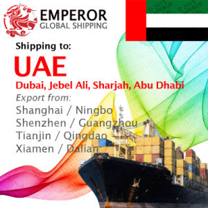 Sea Freight Shipping From China to UAE