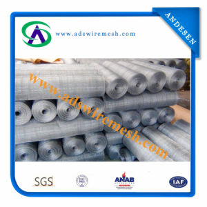 Hot-Dipped Galvanized Square Wire Mesh (Hot sale & factory price) pictures & photos