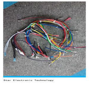 China Factory Electrical /Home Appliance Wire Harness pictures & photos