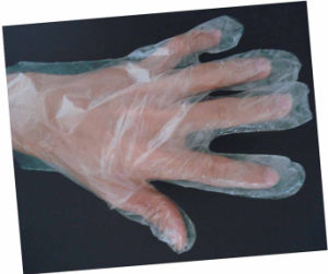 Disposable Washing Glove pictures & photos