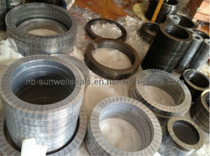 Metal Kammprofile Gaskets (SUNWELL 1110) pictures & photos