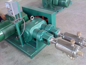 Nitrogen Pumps Liquid Gas Pump (Low Temp Liquid Pump) pictures & photos