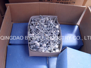High Quality Roofing Nails with Umbrella Head Gavanized Sizes pictures & photos