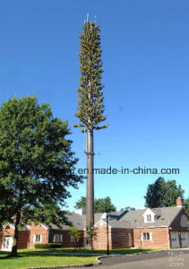 Disguised Pine Tree Tower for Telecommunication pictures & photos