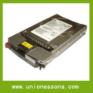 Server Hard Disk (507616-B21)