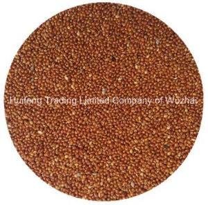Red Broom Corn Millet (Shanxi)