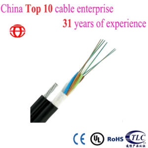 Self-Supporting Single Mode 8 Core Figure 8 Fiber Optic Cable pictures & photos