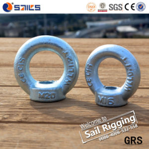 Drop Forged Zinc Plated DIN582 Eye Nut pictures & photos