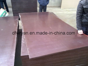Brown and Black Film Faced Plywood with Good Price pictures & photos