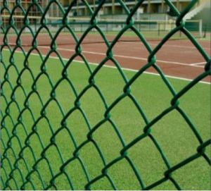 Galvanized/PVC Coated Chain Link Fence/Chain Link Wire Fencing (XM-06) pictures & photos