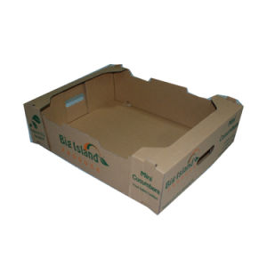 Wholesale Durable Fruit Corrugated Tray pictures & photos