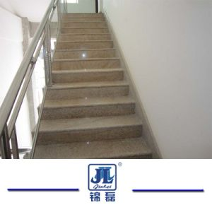 Popular Granite/Marble/Quartzite/Basalt/Slate Tile with Factory Price for Floor/ Flooring & Wall pictures & photos