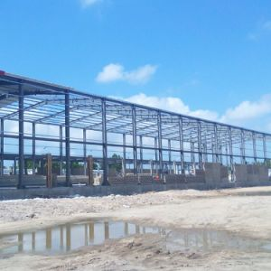 Light Steel Structure Feed Warehouse with 2 Meter Brick pictures & photos