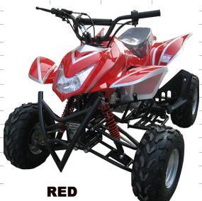 New Model ATV (ATV110S-6)