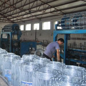 Hot-Dipped Galvanized Sheep Wire Fence pictures & photos