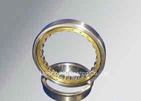 Nup306 Bearing, Cylindrical Roller Bearing N406, Nu406, Nup406, Nj406, Nu2206, Nup2206, Nu2306, Nup2306, Nj2306, Nn3006 pictures & photos