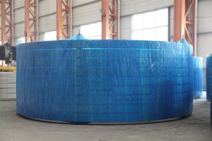 Durable Carbon Steel Flange in China pictures & photos