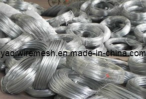 Cheap Price of Galvanized Wire/Black Annealed Wire China Factory pictures & photos
